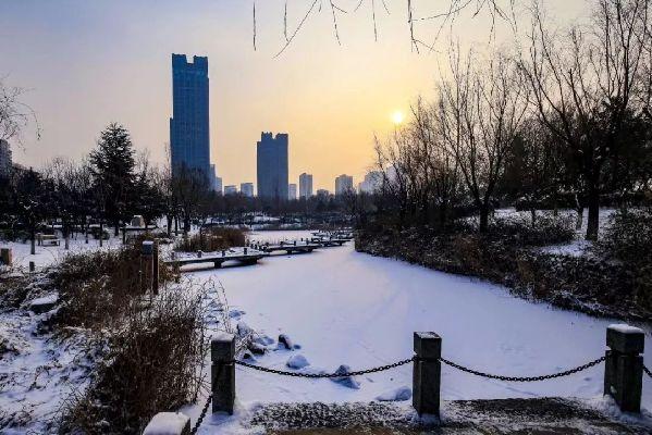 日照:今年的第一场雪,在日照却有比雪更美的风景