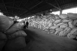 衣再生公益服务中心,不符合捐赠规定的衣服有三四十吨,储存在仓库无法处理
